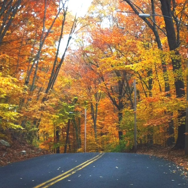 Places To Visit In The Fall On The East Coast: My Favorite Things