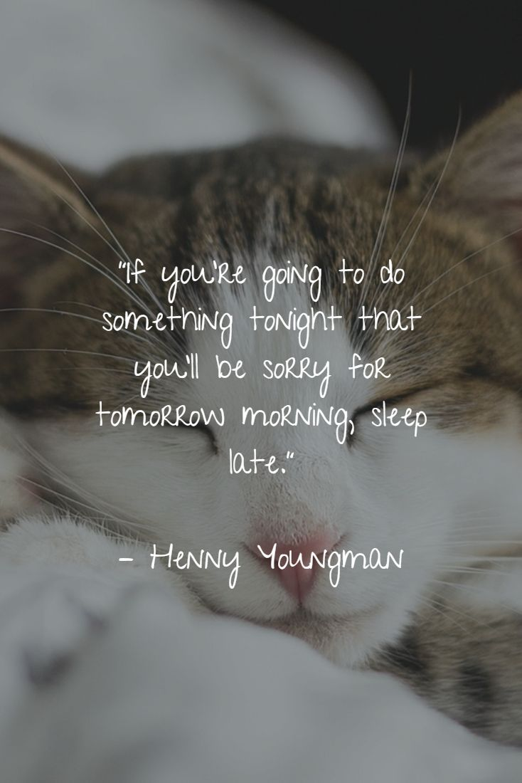 """""""If you're going to do something tonight that you'll be sorry for tomorrow morning, sleep late.""""   – Henny Youngman"""
