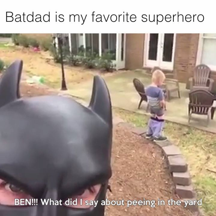 Why is this so funny   Credit: Batdad