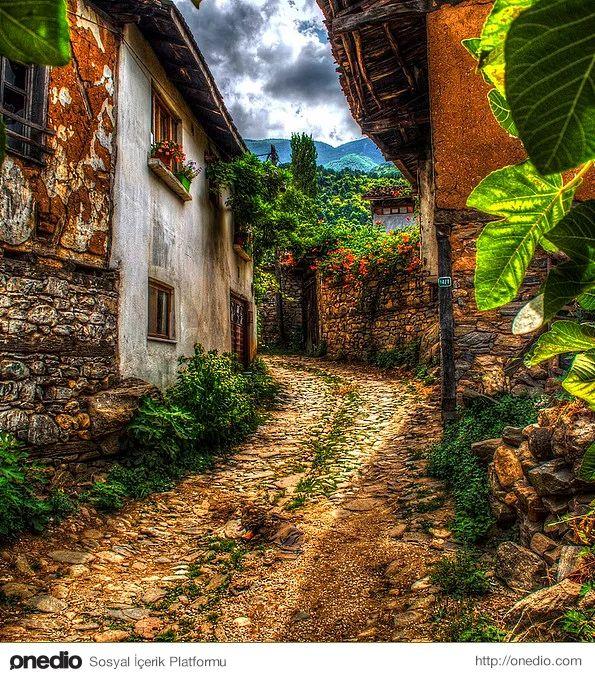 Cumalıkızık Köyü, Bursa-Bir vakıf köyü olarak 1300'lü yıllarda kurulan köyde, tarihi doku çok iyi korunmuştur ve Osmanlı erken döneminin kırsal kesim sivil mimari örnekleri günümüze ulaşmayı başarmıştır. Bu özelliği nedeniyle çok ilgi çeken ve ziyaret edilen bir yerleşim yeri olmuştur. Sık sık tarihsel filmlere mekan olmaktadır.