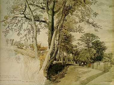 John Ruskin - Trees study possibly at Ambleside in the Lake District (1847)