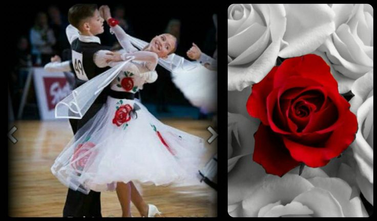 Amazing white dress with deep red roses!! Now for sale! #white #DLK #dress_for_sale #ballroom #red_roses