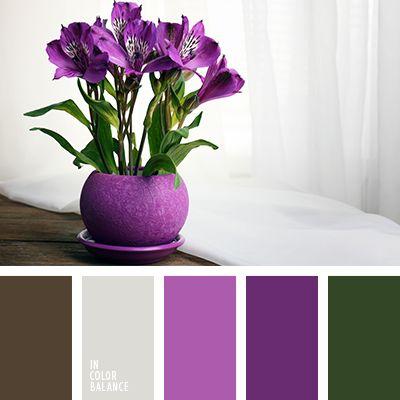 бежевый, коричневый, коричневый с оттенком серого, лиловый цвет, оттенки коричневого, подбор цвета для дома, подбор цвета для ремонта, пурпурный, серо-голубой, серо-коричневый, серый, тёмно-зелёный, темно-фиолетовый, фиолетовый, цветовое решение для