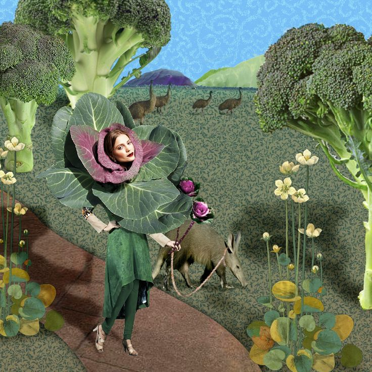 """""""Morning stroll""""  A collage that started of with a picture of a model in a knitted cowl that made me think of cabbage heads."""