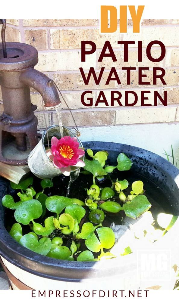 Make A Container Water Garden For Your Patio Container Water