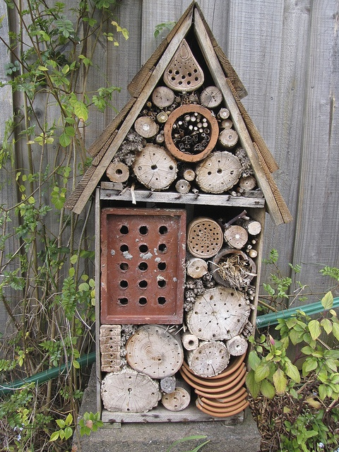Insect & Spider House by zosterops, via Flickr