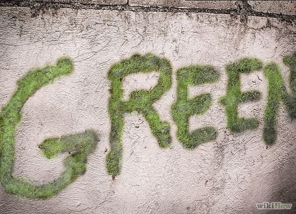Moss Graffiti  http://www.boredpanda.com/the-coolest-and-possibly-most-illegal-diy-project-ever-but-the-end-result-is-brilliant/