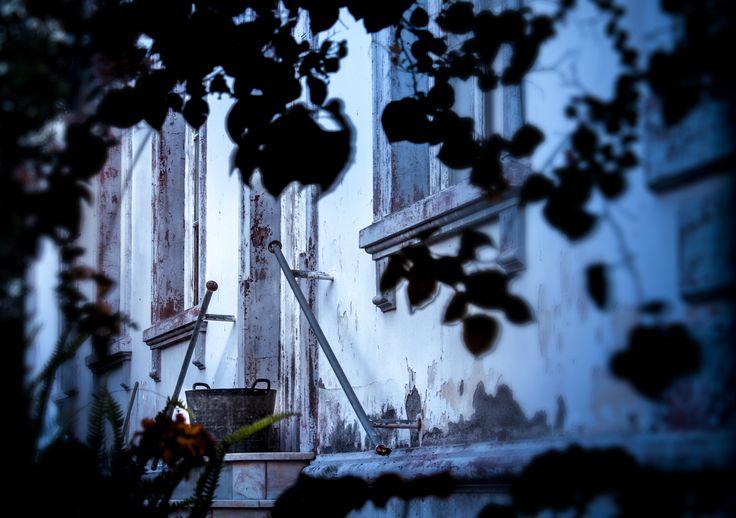 tazacorte, la Palma, shooting at daybreak