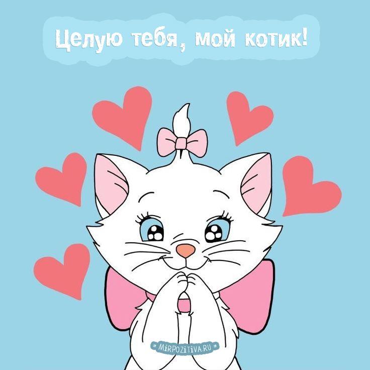 Музыкальные открытки, открытки котик я тебя люблю