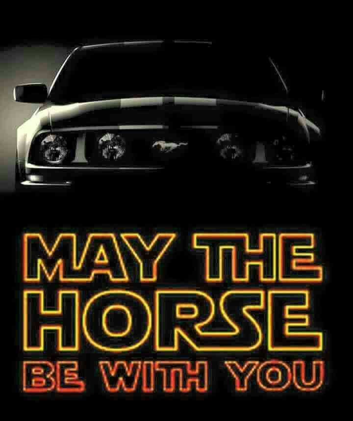 THIS IS LIKE EPIC!!!!!!!!!! STAR WARS+MUSTANG(and MUSTANG is the name of one of my favorite horses names'!!! ;)=AWESOMESAUCE!!!!!!!!