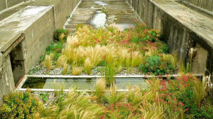 ESKIS Paysagistes » Blog Archive » Les Jardins du tiers-paysage
