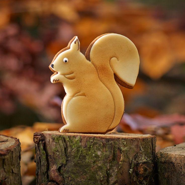 Lebkuchen Squirrel Biscuit | Bettys