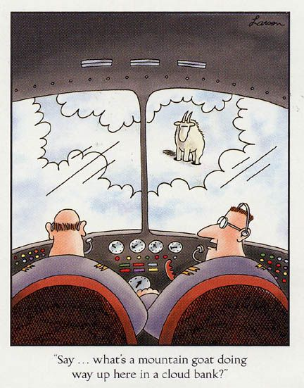 """Say...what's a mountain goat doing way up here in a cloud bank?"" - Gary Larson"
