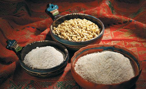 Iroquois indians food anthropology blog iroquois nation for Anthropology of food and cuisine