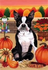 Boston Terrier   By Tomoyo Pitcher, Autumn Themed Dog Breed Flags 12 X 18