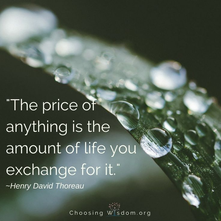 Growing In Patience: The price of anything is the amount of life you exchange for it. - Hendry David Thoeau