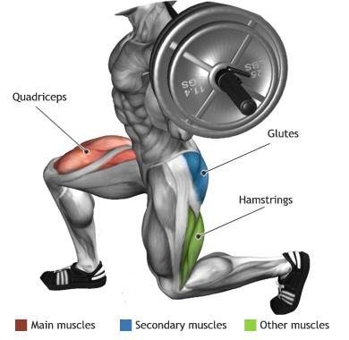 http://musclebuildingworkoutop.blogspot.com.co/ QUADRICEPS - BARBELL LUNGE