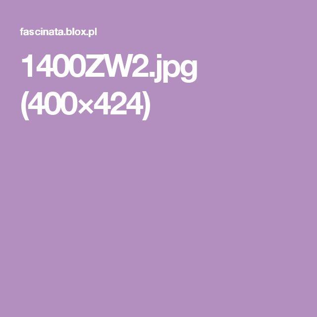 1400ZW2.jpg (400×424)