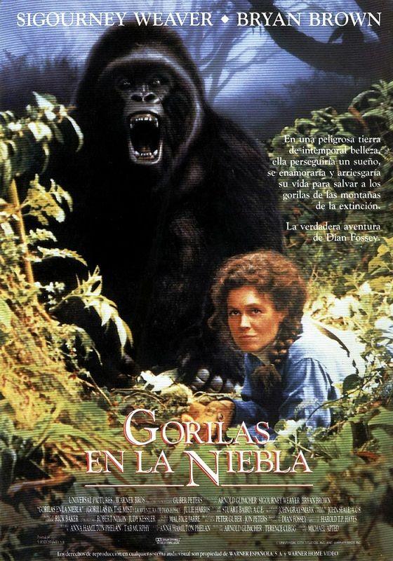 Gorilas en la Niebla / Gorillas in the Mist (1988) Michael Apted