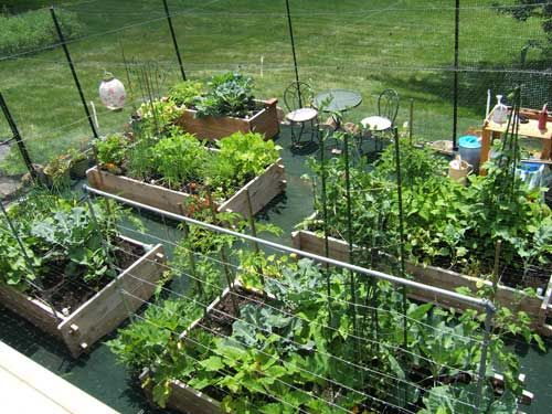 17 best ideas about square foot gardening planner on pinterest