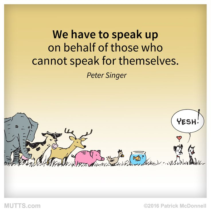 Speak up for animals and help out in any way you can!