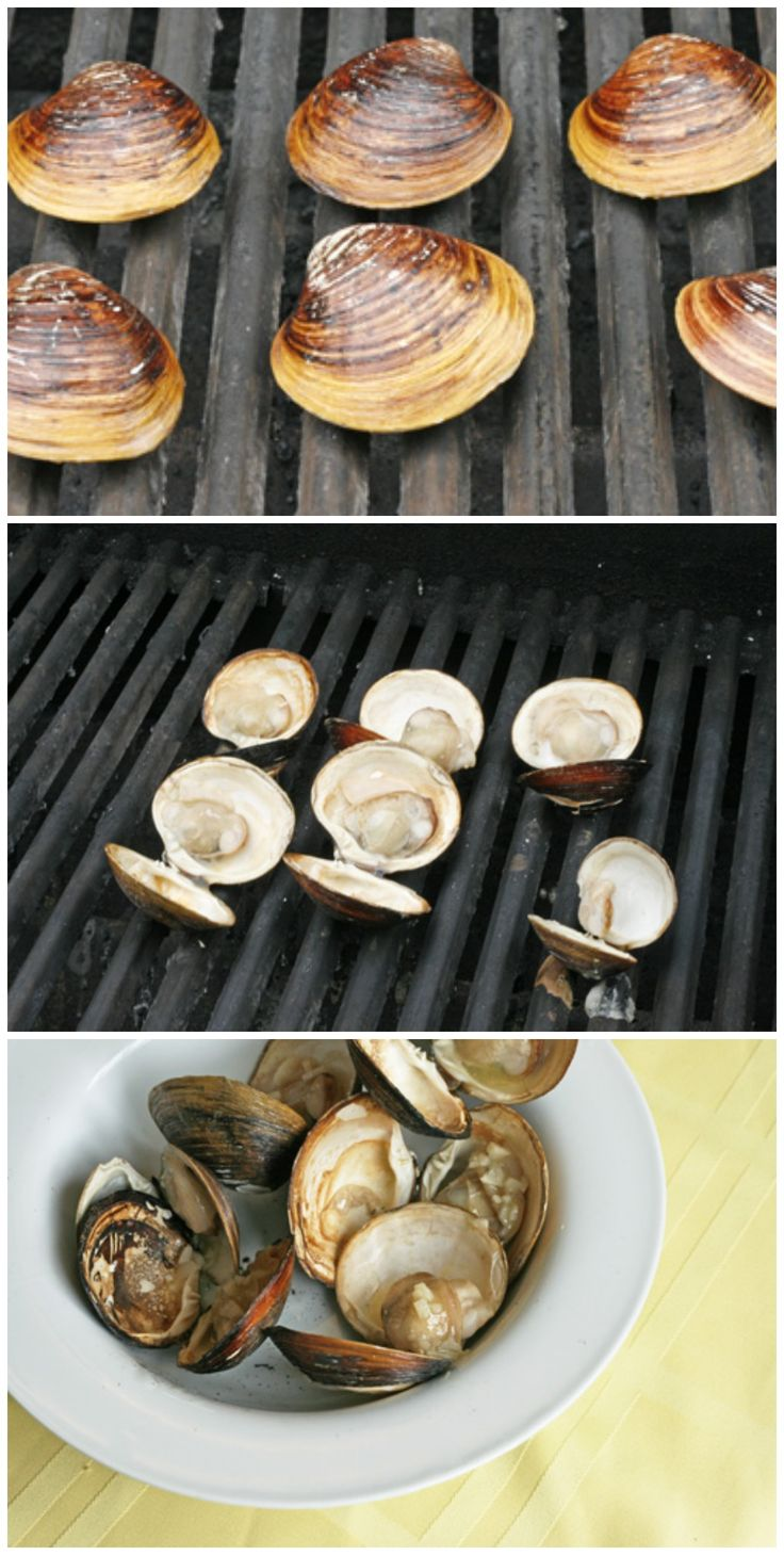 HOW TO: Cook Clams on the Grill #howto #grilling