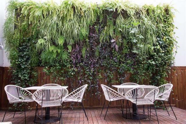 10 techos verdes y jardines verticales para inspirarse  Revista Jardín. Foto: Inés Clusellas