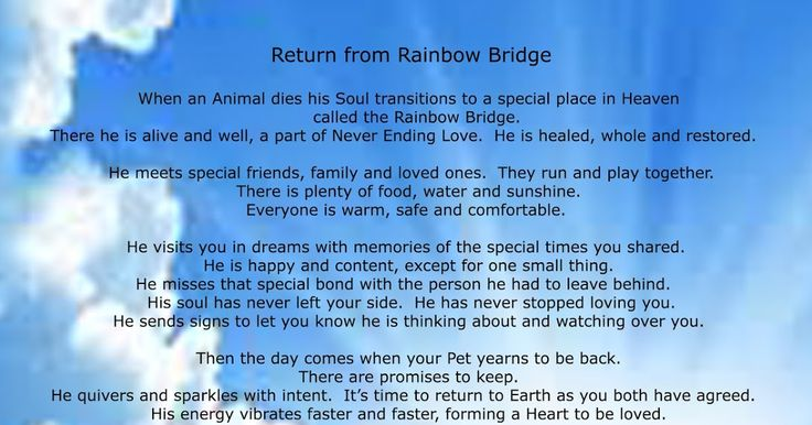Rainbow Bridge poem for dogs, rainbow bridge poem for cats, rainbow bridge poem for horses, rainbow bridge poem for shelter pets, rainbow bridge poem for special needs pets, brent atwater