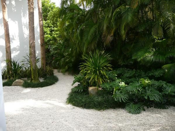 Beach fl florida design599 x 449 63 kb jpeg x landscaping Florida landscape design ideas