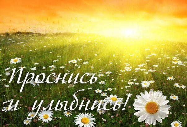 Открытка картинка доброе утро открытка доброе утро с добрым утром пожелание доброго утра картинка доброе утро  Открытки и картинки Доброе утро Открытки