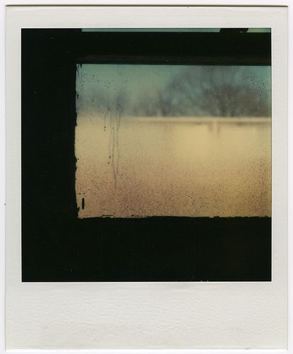 Tennessee Window    SX-70 Photograph    (by werkadopolis)