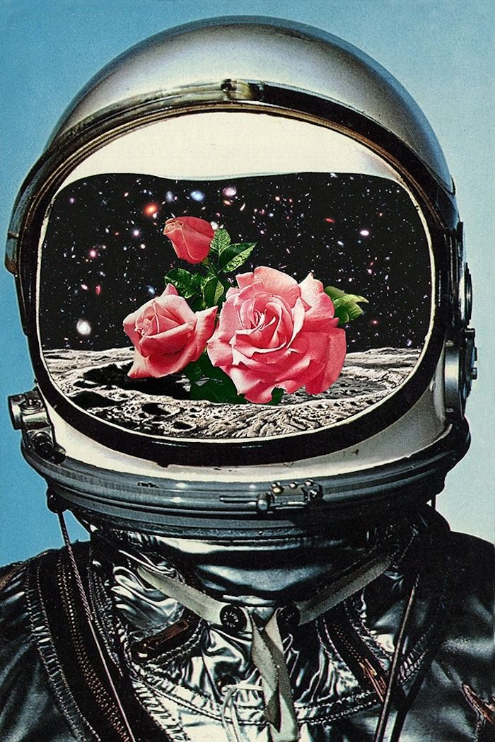 'Astronaut and Roses', Spring Crop at the Rosseland Crater, pop art, collage art,
