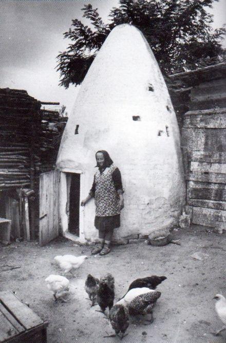 Tyúkól a bajai szőlőkben (1978, Kunkovács László gyűjtése)
