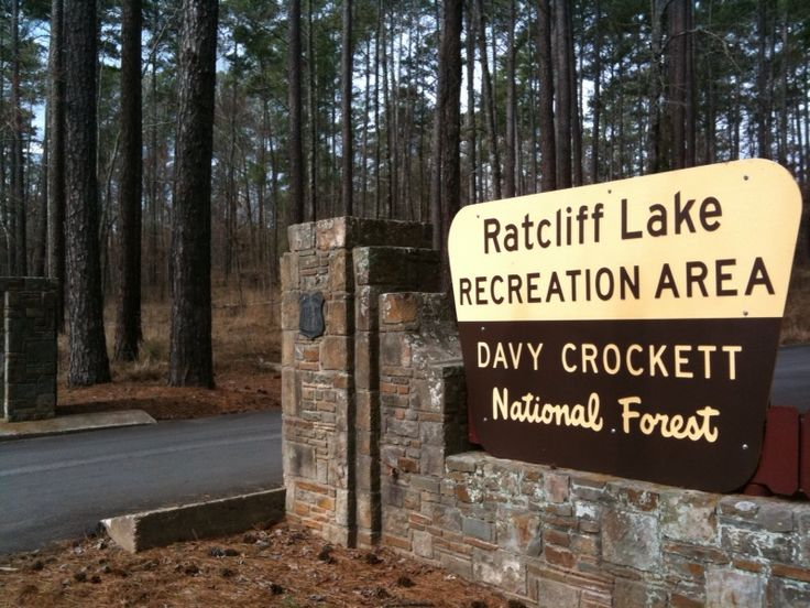 Ratcliff Lake Recreation Area Davy Crockett National Forest East Texas Pine Wood Forests