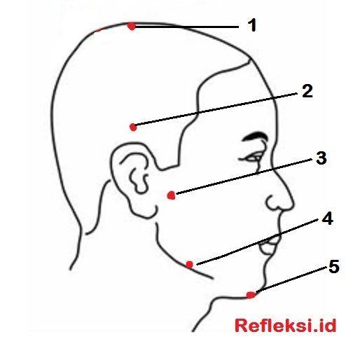 Cara mengobati sakit gigi dengan pijat refleksi dan akupresur, titik refleksi sakit gigi dan gusi