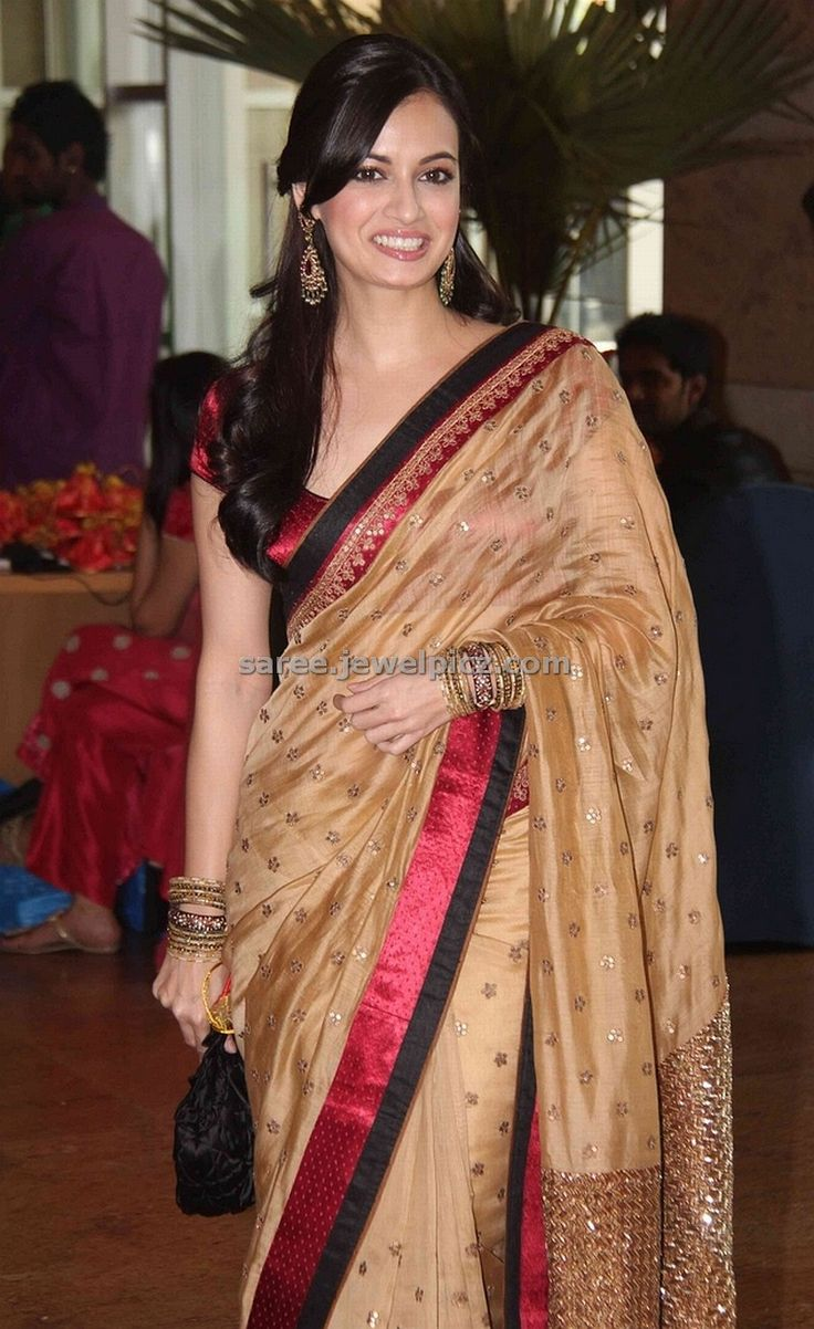 Dia Mirza in red saree, blouse with wide neck pattern.