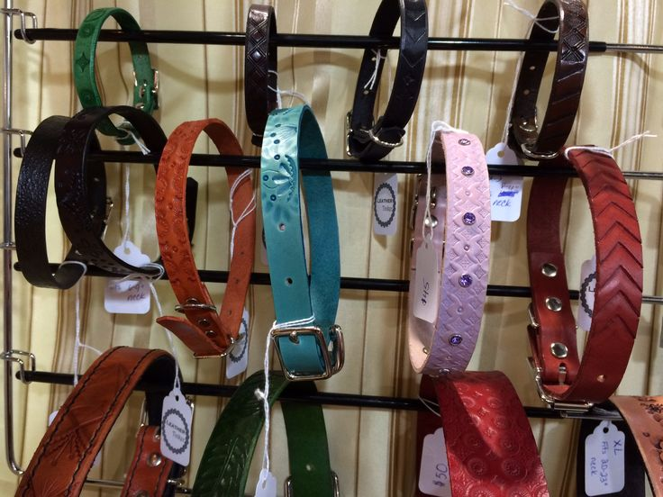 Leather pet collars, Tamar Moyse, The Leather Tinker