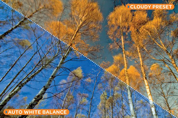 10 camera techniques to master in 2014: master white balance settings for accurate colours