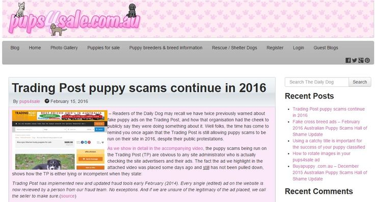 Readers of the Daily Dog may recall we have twice previously warned about fake puppy ads on the Trading Post, and how that organisation had the cheek to publicly say they were doing something about it. Well folks, the time has come to remind you once again that the Trading Post is still allowing puppy scams to be run on their site in 2016, despite their public protestations - http://blog.pups4sale.com.au/trading-post-puppy-scams-continue-in-2016/