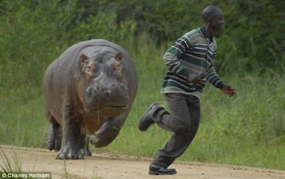 It Happens Only in Africa – 50 Photos | FreeFunLinks.com