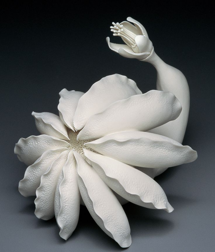 Ceramics, Lindsay Feuer, Artist, Hybrid Flora No. 7