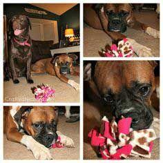 {Dog-Gone #2} Fleece Puff Dog Toy