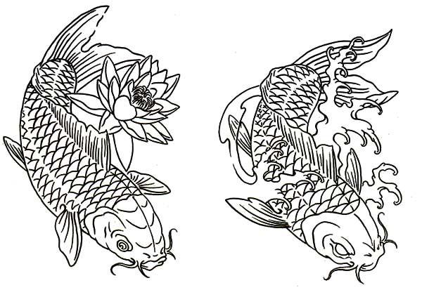 Coy Fish Lotus And Twin Coy Fish Coloring Pages Fish Coloring Page Coy Fish Coloring Pages