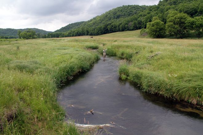 Trout fishing in the Driftless Area of southwestern Wisconsin ...