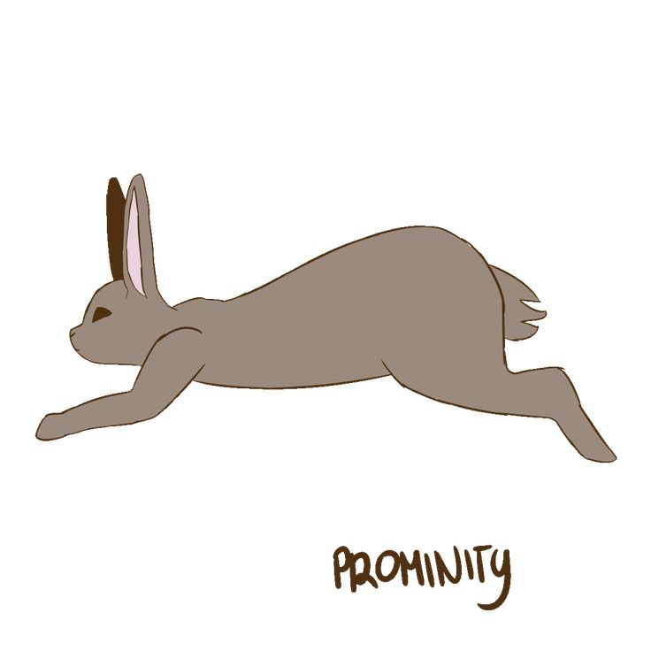 Картинка анимация заяц на прозрачном фоне