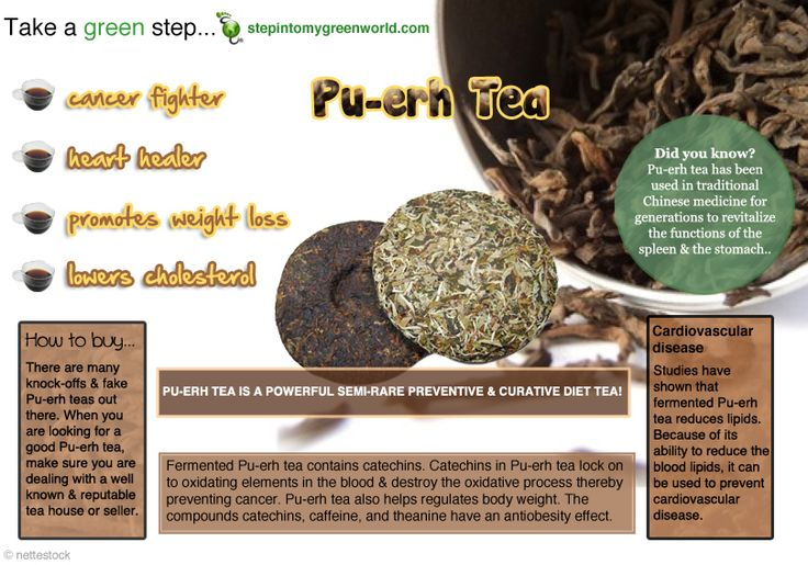 ☛ Do you drink Pu-erh tea?   Do you know it is one of the most potent tea available today?  ✒ Share | Like | Re-pin | Comment