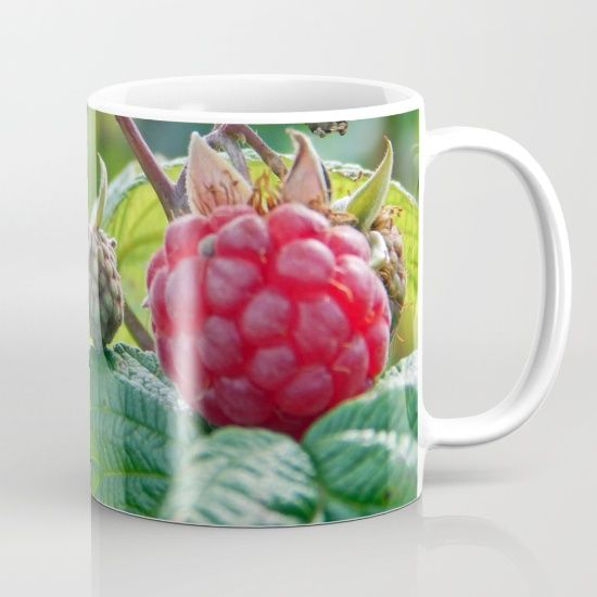 New, Red Raspberry https://society6.com/product/raspberries-ready-for-harvest_mug?curator=danbytheseacurator This photo is Available on over 20 products  Follow DanByTheSea  https://society6.com/danbythesea #society6 #danbythesea