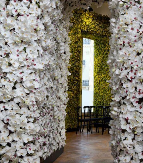 27 Best Dior Flower Walls Images On Pinterest