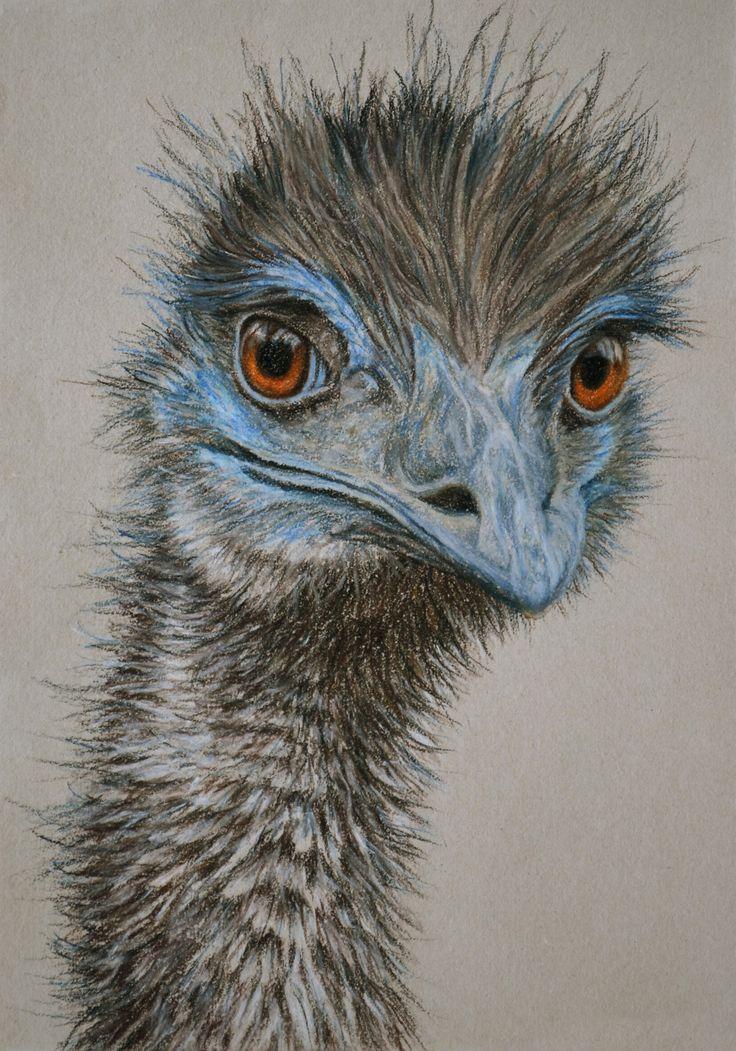 Rachel Newling ~ Emu II (pastel)