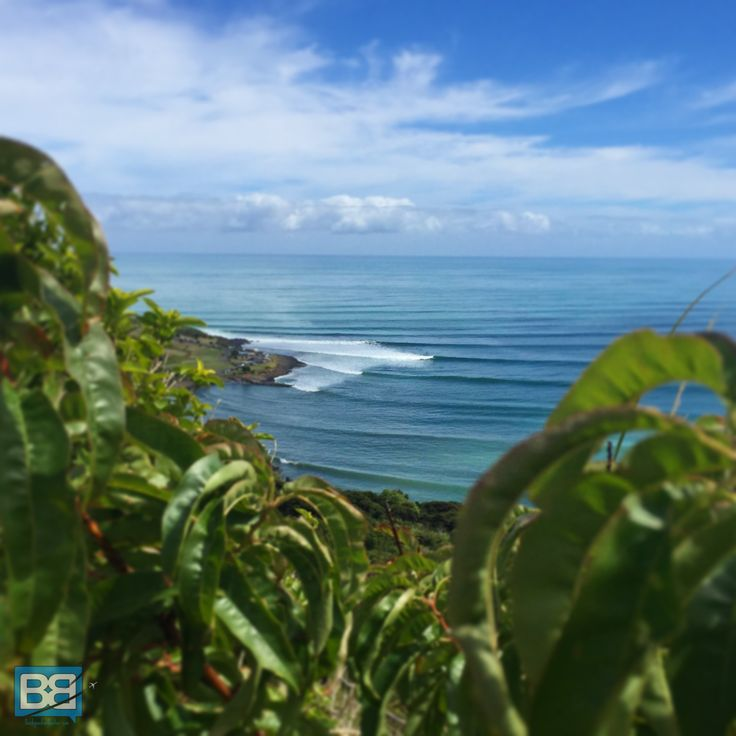 How Much To Budget For A Month In New Zealand Surfing